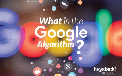 How does the Google Algorithm affect your website?